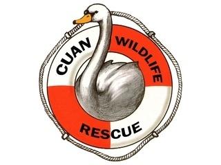 Cuan Wildlife Rescue