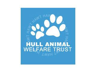 Hull Animal Welfare Trust