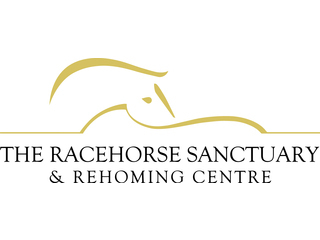 THE RACEHORSE SANCTUARY LTD