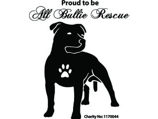 All Bullie Rescue