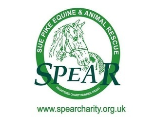 SPEAR Sue Pike Equine & Animal Rescue logo