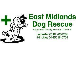 East Midlands Dog Rescue logo