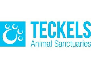 Teckels Animal Sanctuaries