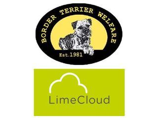 Lime Cloud Limited supporting Border Terrier Welfare logo