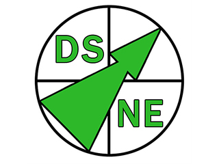 DOWN'S SYNDROME NORTH EAST (DSNE)