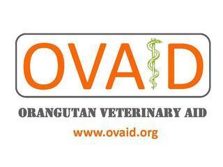 Orangutan Veterinary Aid