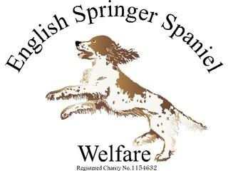 English Springer Spaniel Welfare logo