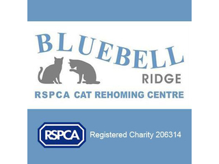 RSPCA Sussex East And Hastings Branch (Bluebell Ridge) logo