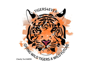 Tigers 4 Ever charity logo