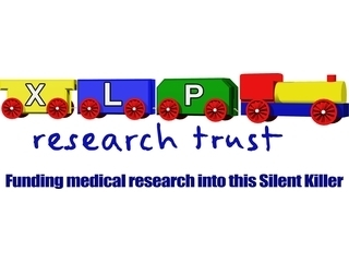 XLP Research Trust logo