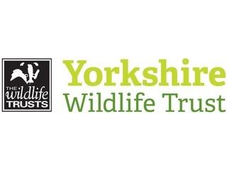 Yorkshire Wildlife Trust logo