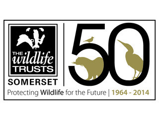 Somerset Wildlife Trust logo