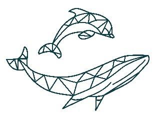 Hebridean Whale & Dolphin Trust - HWDT