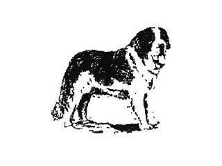 The St Bernard Trust logo