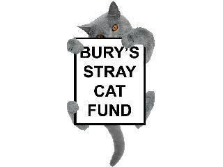 Fundraise for Bury's Stray Cat Fund | Everyclick