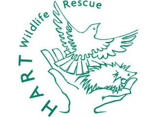 Hart Wildlife Rescue logo