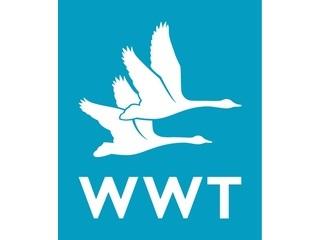 Wildfowl & Wetlands Trust (WWT) logo