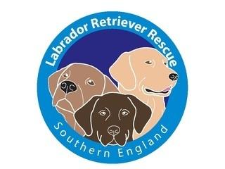 Labrador Retriever Rescue Southern England logo